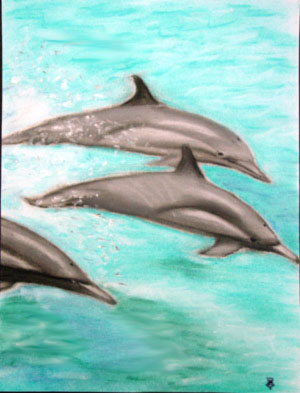 Three Dolphins - Pastel Chalk by Isabel Cattadoris